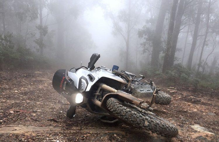 Honda CRF1000 Africa Twin Standard e Adventure Sports – Barre Paracarena